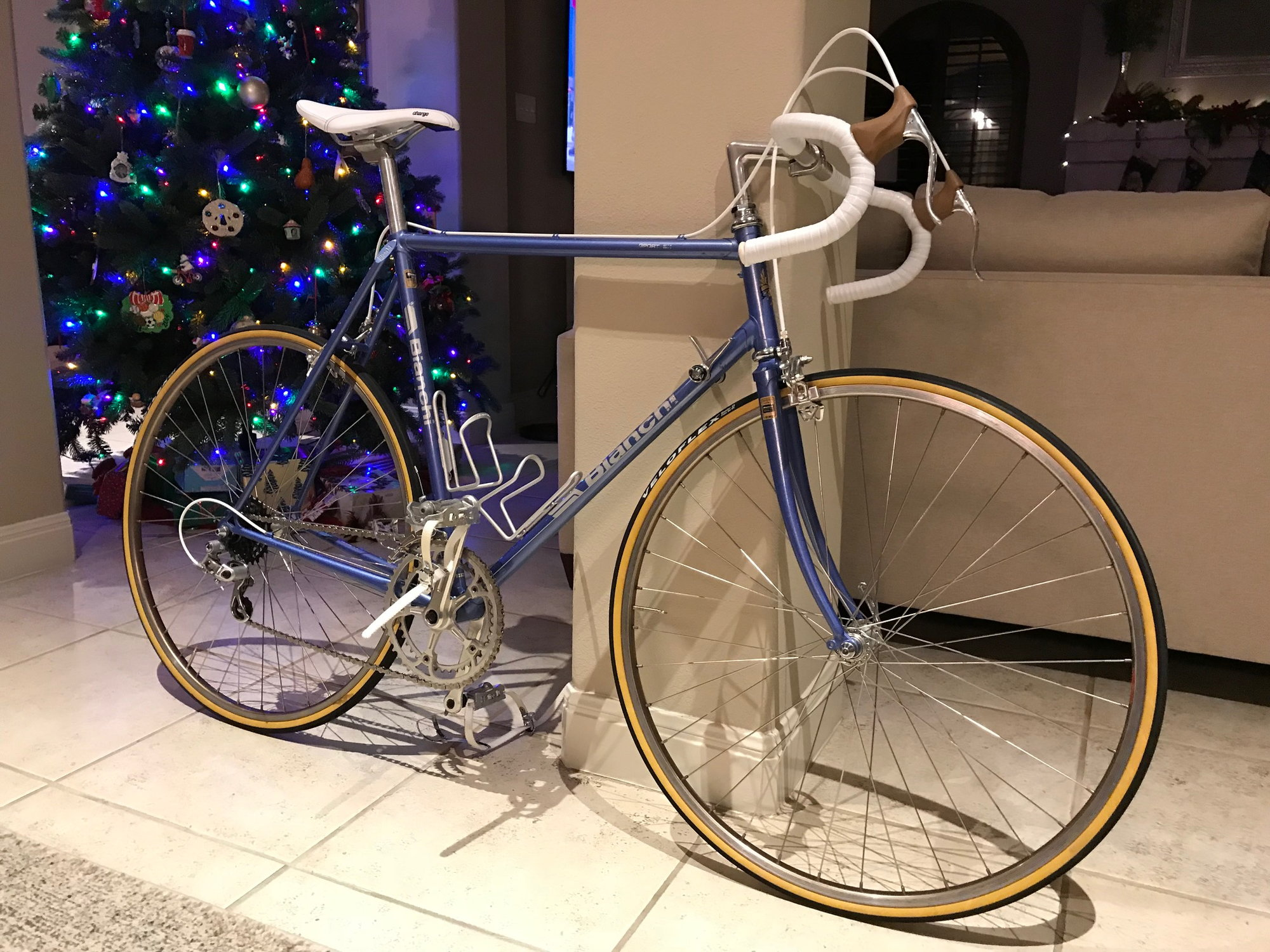Show Us Your Bike In Front Of The Tree Page 3 Bike Forums