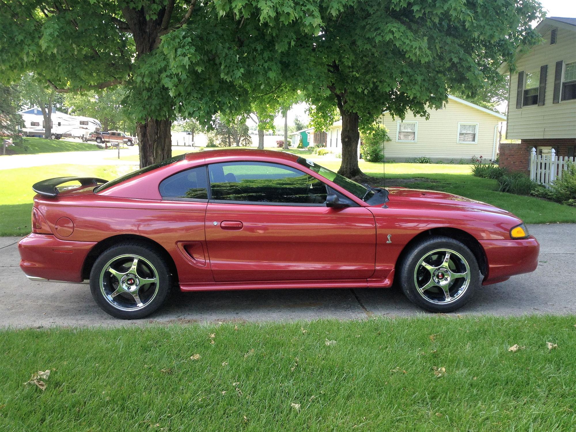 96 Mustang Cobra Mustangforums Com