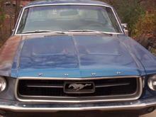 My 1967 Mustang