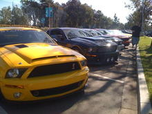 with stagnpede captain joes car, silvercs, branomano and devins