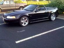 00 Mustang 1