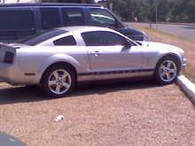 Mustang tint