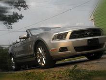 My New Mustang