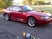 2003 mustang Gt stock side view