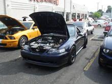 2002 gt conv, procharger, full exhaust,edelbrock intake,bulit monster transmission, 2500stall, full suspension