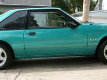 Mustang 023