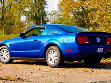 Sabine's Stang on 25 Oct 2008