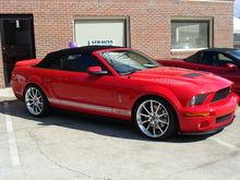 2008 GT500
