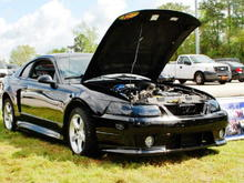 Another car show pic