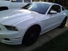 14 Mustang After
