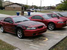 My 2001 Cobra and my early 2001 GT