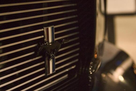 Mustang 005