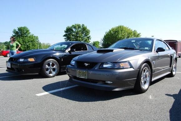 a cobra and my car.