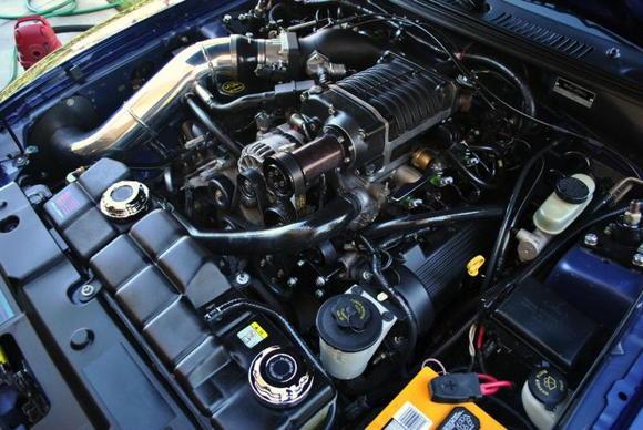 "Saleen Twin Screw SC w/ 2.875"" Pulley, Chicane Intercooler, 90mm MAF & Custom CAI"