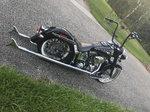 2008 Harley Davidson Softail Delix