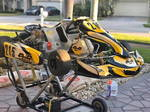 PCR Kart with ROK GP Engine