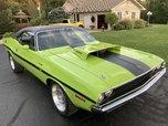 1970 Dodge Challenger  for sale $69,900