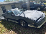 1984 Pontiac Firebird  for sale $1,500