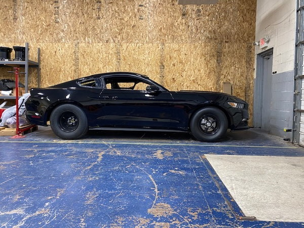 2017 shootout or stock mustang  for Sale $35,000