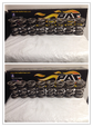 PAC Racing Valve Springs Set of 16 (1329&1356)  for sale $275
