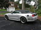 05 GT vert