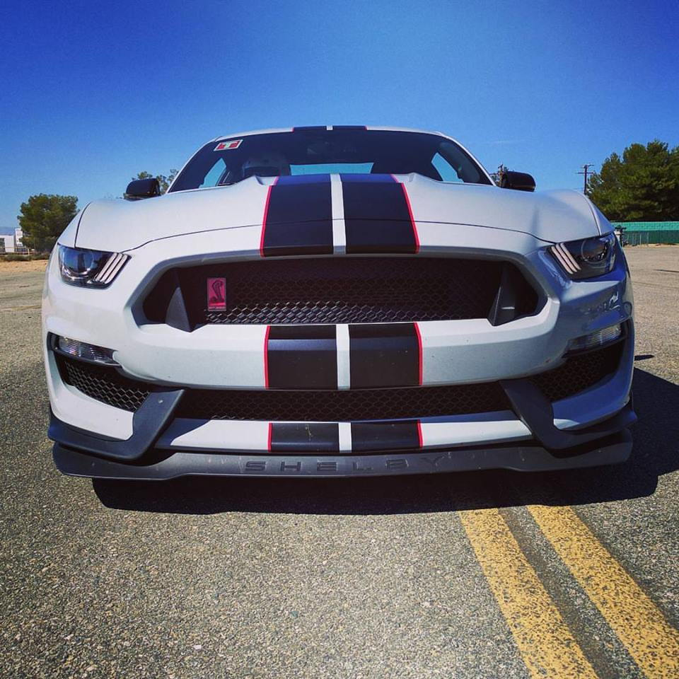 GT350 Mustang Official Reveal