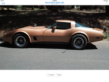 First vette