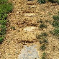 unfinished steps up hill