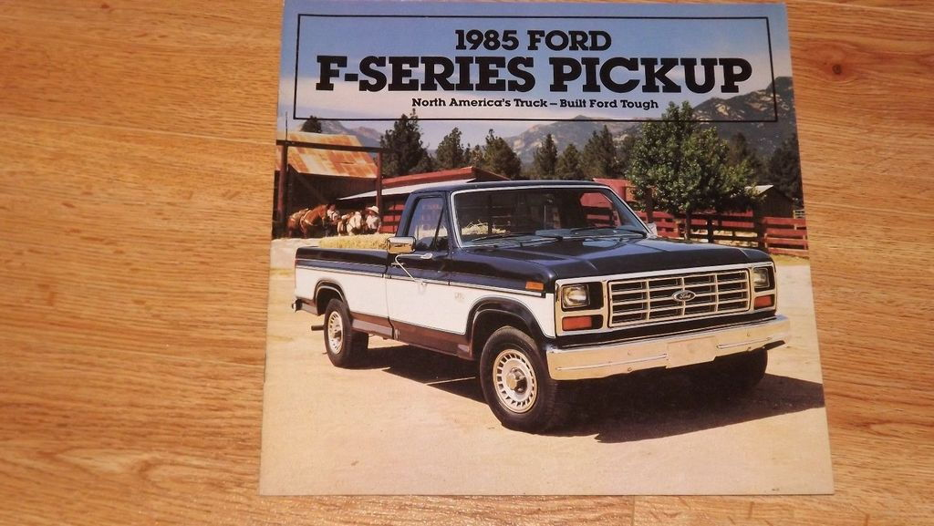 Mysterious 1985 Bodyside Protection Molding Ford Truck