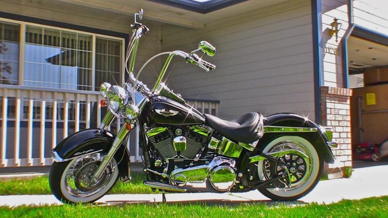 2009 softail deluxe harley davidson forums. Black Bedroom Furniture Sets. Home Design Ideas