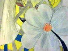 Untitled Album by Dishersgirl - 2012-01-06 00:00:00