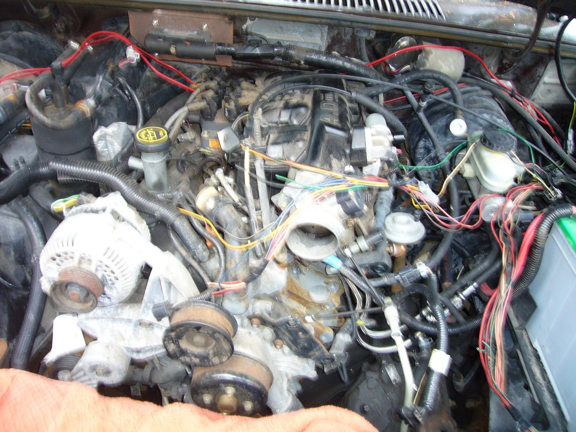 engine swap wiring harness 3 0 ranger - wiring diagram bear-shine-a -  bear-shine-a.zaafran.it  zaafran.it
