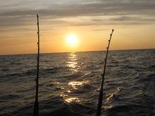 sunrise hydros