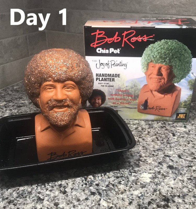 Chia Pet Bob Ross Day 10 Day 10 Day 10 Pic Added The Hull Truth Boating And Fishing Forum