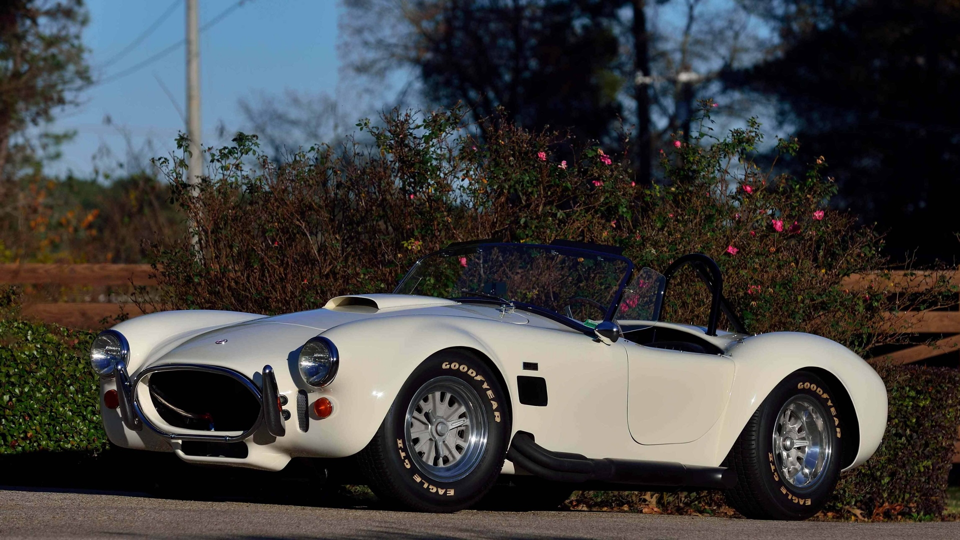 Jim McMurrey collection, 1967 Shelby Cobra 427 roadster