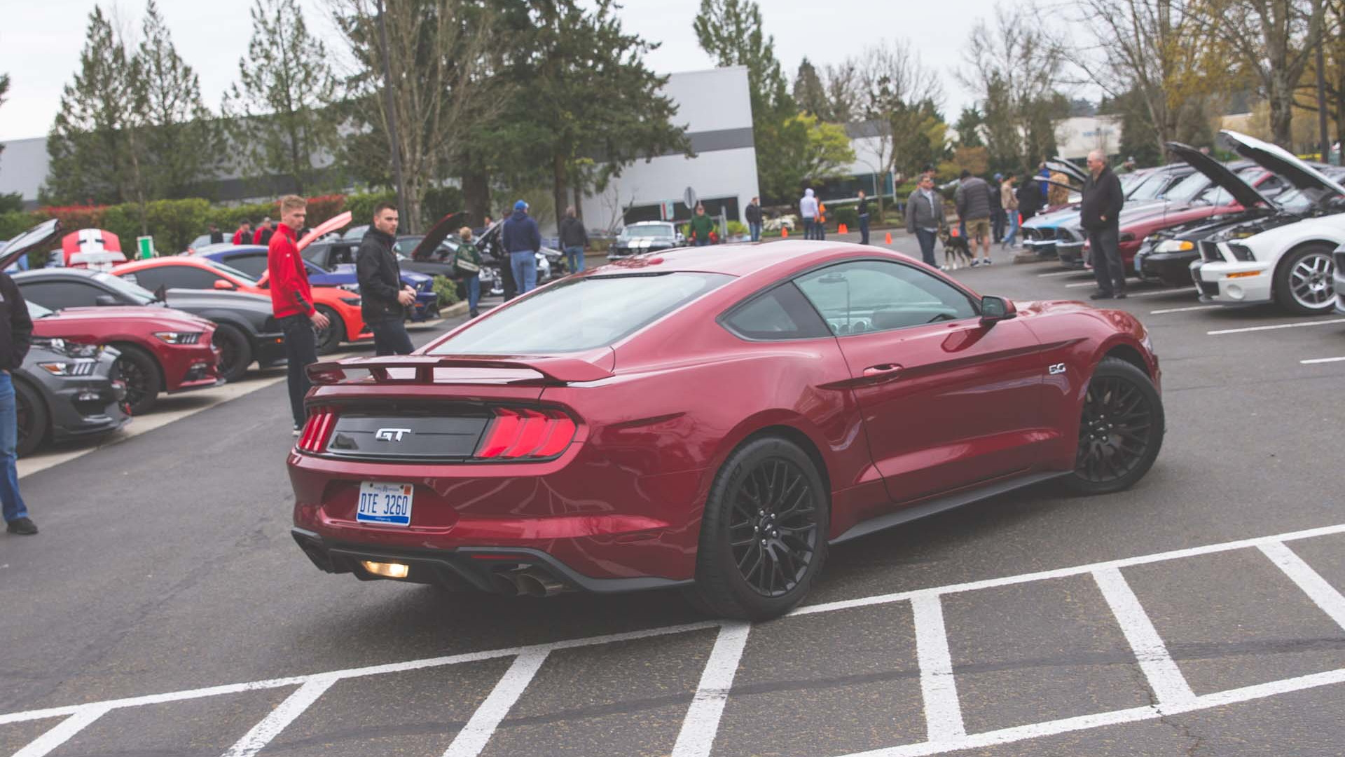 Portland Cars & Coffee Mustang Day