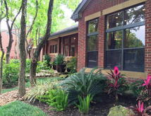 Apartments for rent in Webster, TX