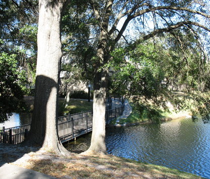 Swan Lake Apartments Tampa