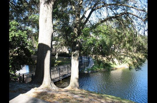 Swan Lake Apartments Tampa Fl Reviews
