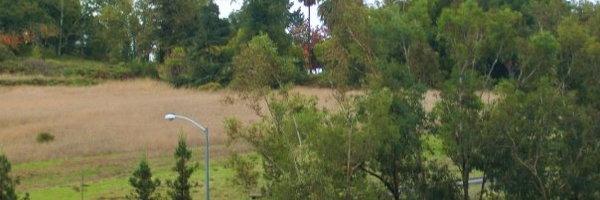 Meadows at Fountaingrove