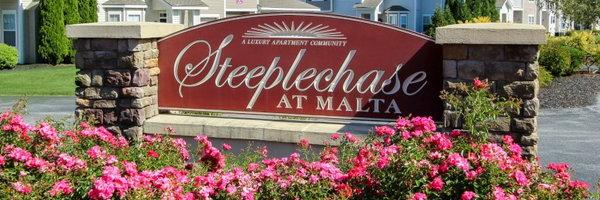 Steeplechase at Malta