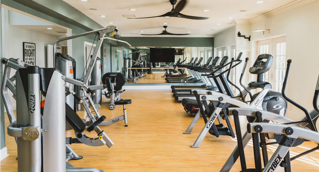Naturally lit fitness center with cardio options
