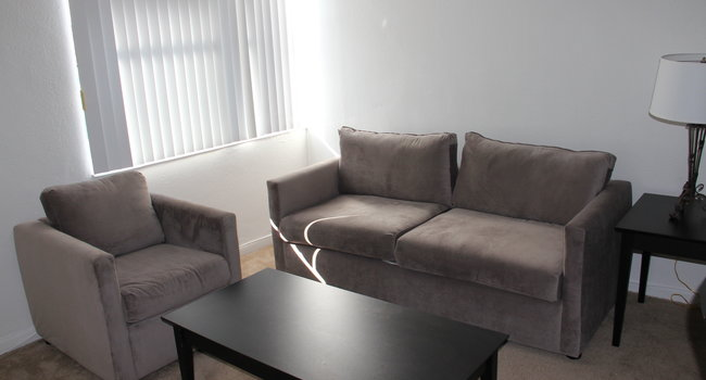 Dominion Tower - 20 Reviews | Miami, FL Apartments for Rent