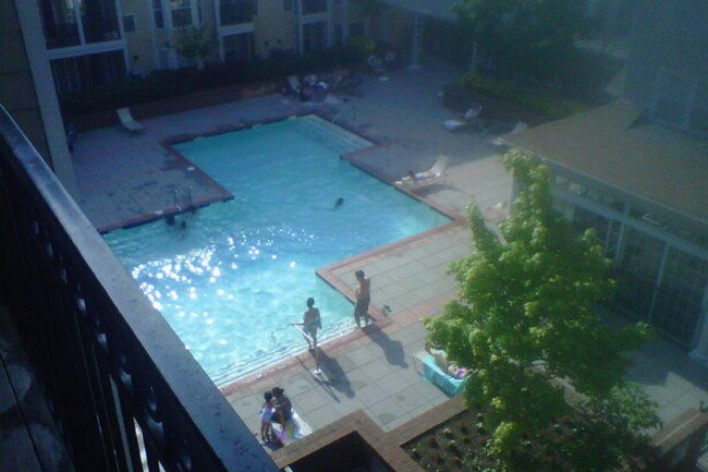 Fairfield Apartments - 42 Reviews | Stamford, CT ...